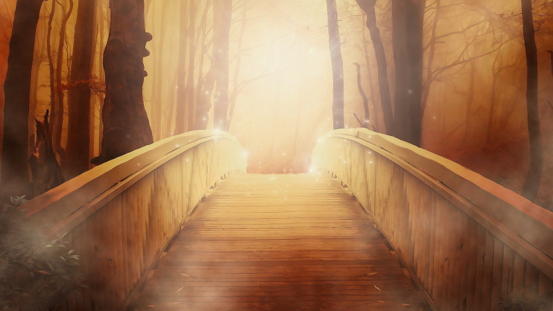 Your Light - A Special Solstice Message